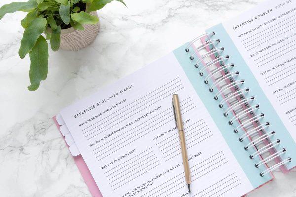 Reflectie Intenties Mint Flow Planners 2019